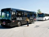 Castel Romano Outlet buses
