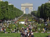 General view of planted fields and trees installed on the Champs Elysees near the Arc de Triomphe monument in Paris